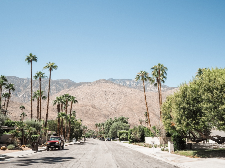 palm springs american road trip